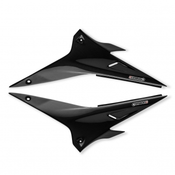 Carbon side fairing Aprilia RSV4 + Tuono V4